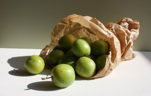greengage plums in a bag